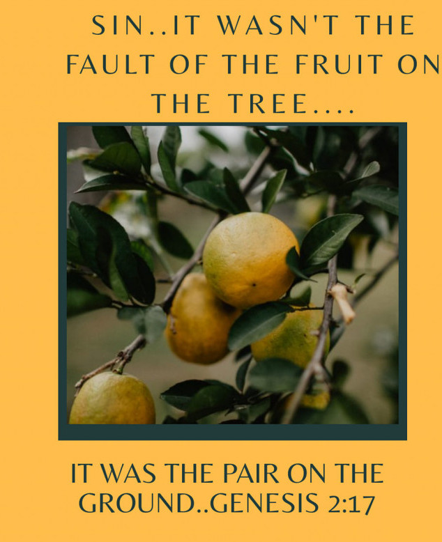 Sin,it wasn't the fault of the fruit on the tree,it was the pair on the ground..Genesis 2:17